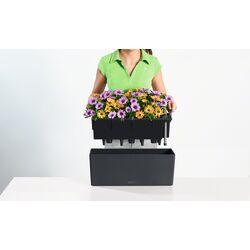 LECHUZA Balconera Color50 Ζαρντινιέρα 50x19x19cm Αυτοποτιζόμενη με Δοχείο Φύτευσης ΑΝΘΡΑΚΙ Γερμανίας