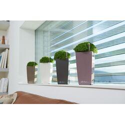 LECHUZA Mini-Cubi Επιτραπέζια Γλάστρα 9.5x9.5x18.5cm Αυτοποτιζόμενη με Δοχείο Φύτευσης ΛΙΛΑ Γερμανίας