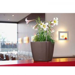 LECHUZA QUADRO 21 LS Premium Επιτραπέζια Γλάστρα 22.5x22.5x20.5cm ΑΥΤΟΠΟΤΙΖΟΜΕΝΗ με Δοχείο Φύτευσης Καφέ Espresso Γυαλιστερή  Γερμανίας