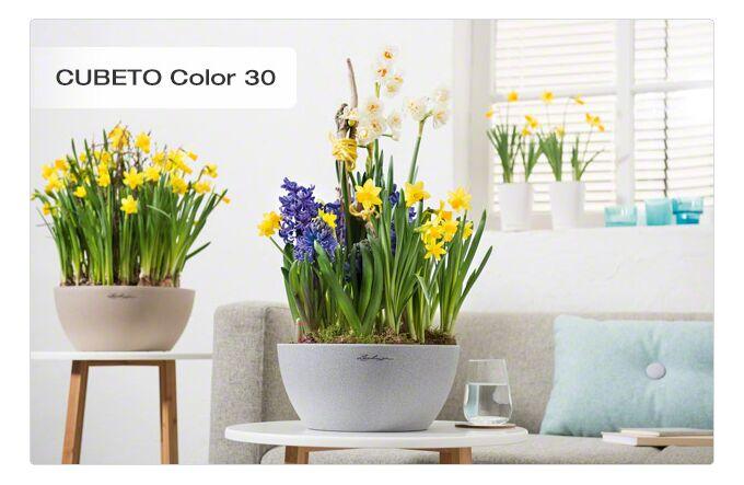 LECHUZA Cubeto Color40 Επιτραπέζια Γλάστρα Ø40x18.3cm Αυτοποτιζόμενη με Δοχείο Φύτευσης 11.5lt ΓΚΡΙ με Όψη Πέτρας Γερμανίας