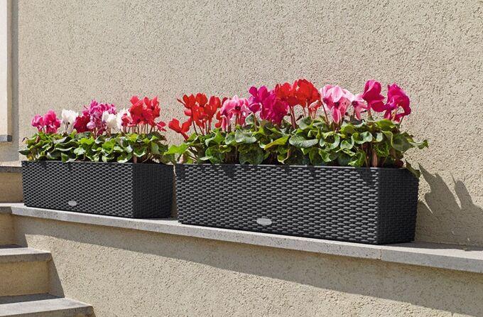 LECHUZA Balconera Cottage80 Ζαρντινιέρα 79x19x19cm Αυτοποτιζόμενη με 2 Δοχεία Φύτευσης ΑΝΘΡΑΚΙ Γερμανίας RedDot Award 2010