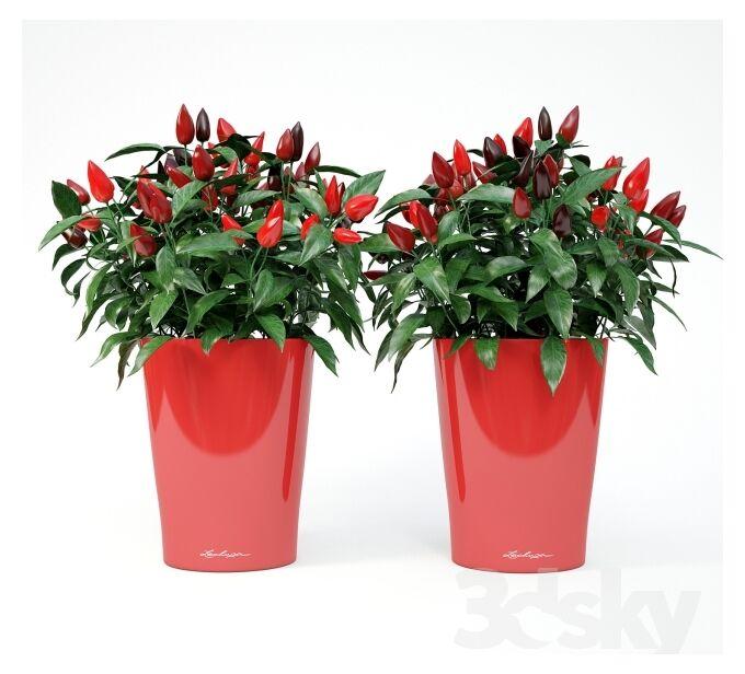 LECHUZA Deltini Επιτραπέζια Γλάστρα 15x15x19cm Αυτοποτιζόμενη με Δοχείο Φύτευσης ΚΟΚΚΙΝΗ Γερμανίας iF Product Design Award 2012