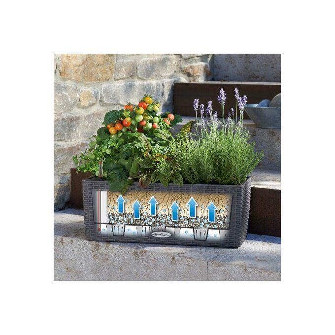 LECHUZA Balconera Cottage50 Ζαρντινιέρα 50x19x19cm Αυτοποτιζόμενη με Δοχείο Φύτευσης ΑΝΘΡΑΚΙ Γερμανίας RedDot Award 2010