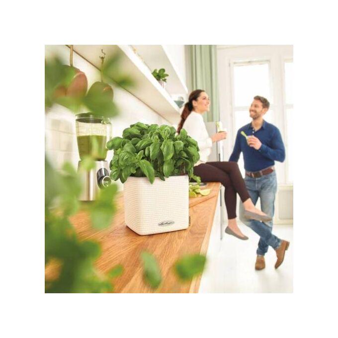 LECHUZA Cube Color16 Επιτραπέζια Γλάστρα 17x17x16cm Αυτοποτιζόμενη με Δοχείο ΛΕΥΚΗ Γερμανίας RedDot Award 2014German Design Award 2016