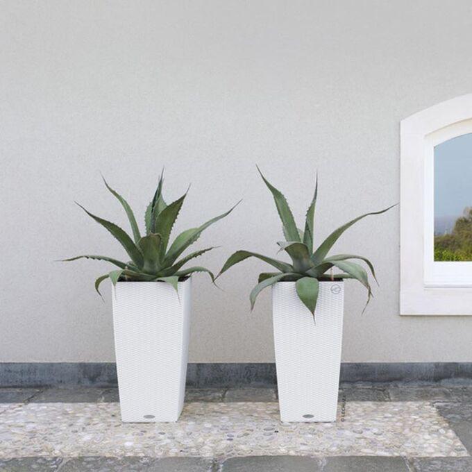 LECHUZA Cubico Cottage 30 Επιδαπέδια Γλάστρα 29.5x29.5x56.5cm Αυτοποτιζόμενη με Δοχείο Φύτευσης Λευκή Γερμανίας