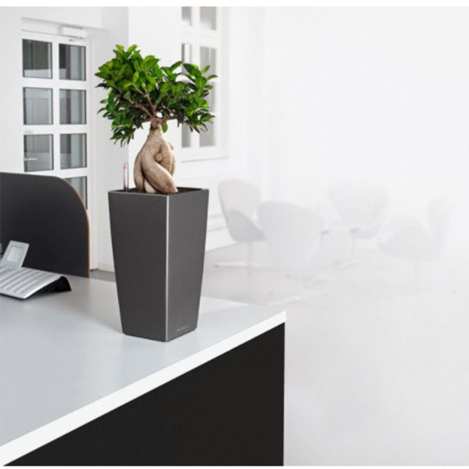 LECHUZA CUBICO 22 Premium Επιτραπέζια Γλάστρα 22x22x41cm Αυτοποτιζόμενη με Δοχείο Φύτευσης Ανθρακί Γυαλιστερή Γερμανίας