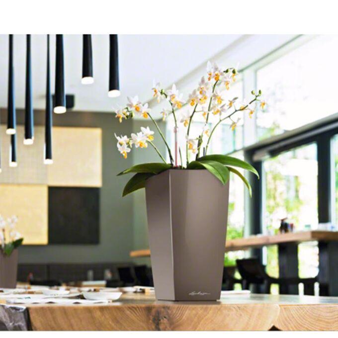 LECHUZA CUBICO 22 Premium Επιτραπέζια Γλάστρα 22x22x41cm Αυτοποτιζόμενη με Δοχείο Φύτευσης Γκρι-Καφέ Γυαλιστερή Γερμανίας