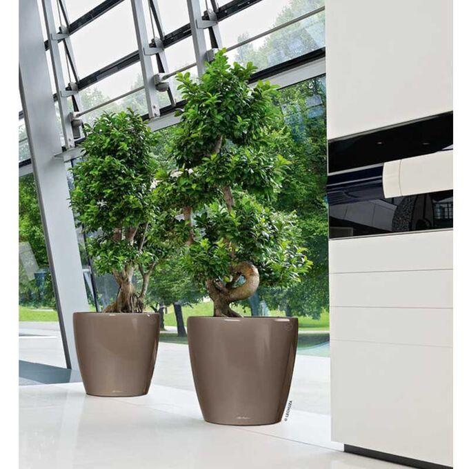 LECHUZA Classico 35 LS Premium Επιδαπέδια Γλάστρα Ø36x32.5cm Αυτοποτιζόμενη με Δοχείο Φύτευσης Γκρι-Καφέ  Γυαλιστερή Γερμανίας