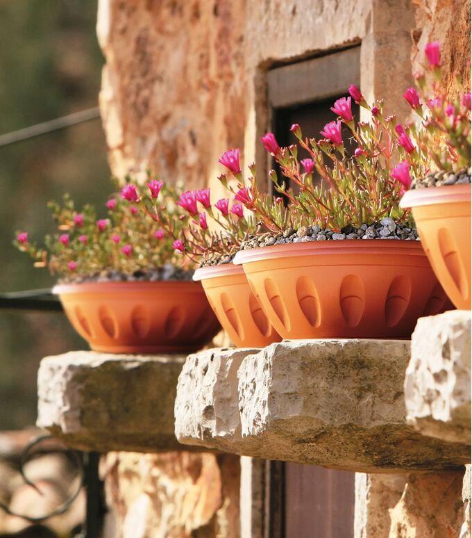 Γλάστρα Μπωλ Βαρέως Τύπου με Πιάτο Ø40x24x17cm 15lt Πλαστική Κεραμιδί  ALBA BAMA Ιταλίας